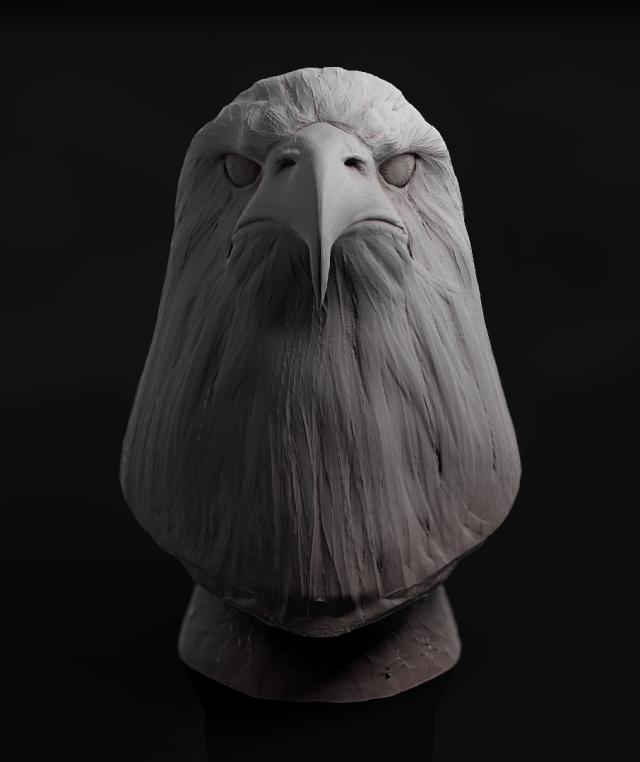Eagle2_00000