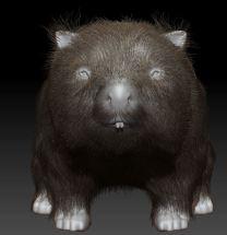 wombat7 - Copy